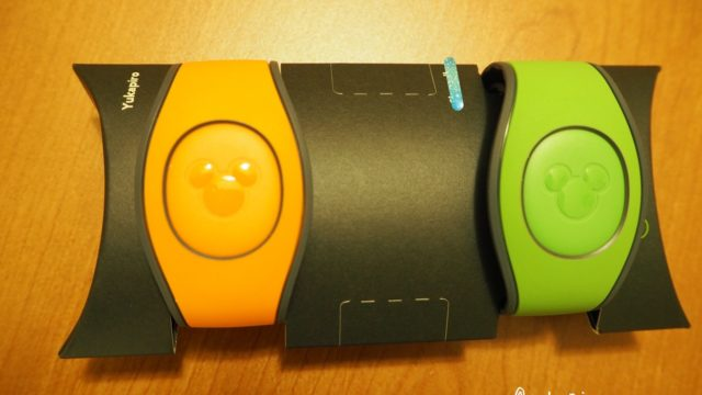 WDW Magic Band